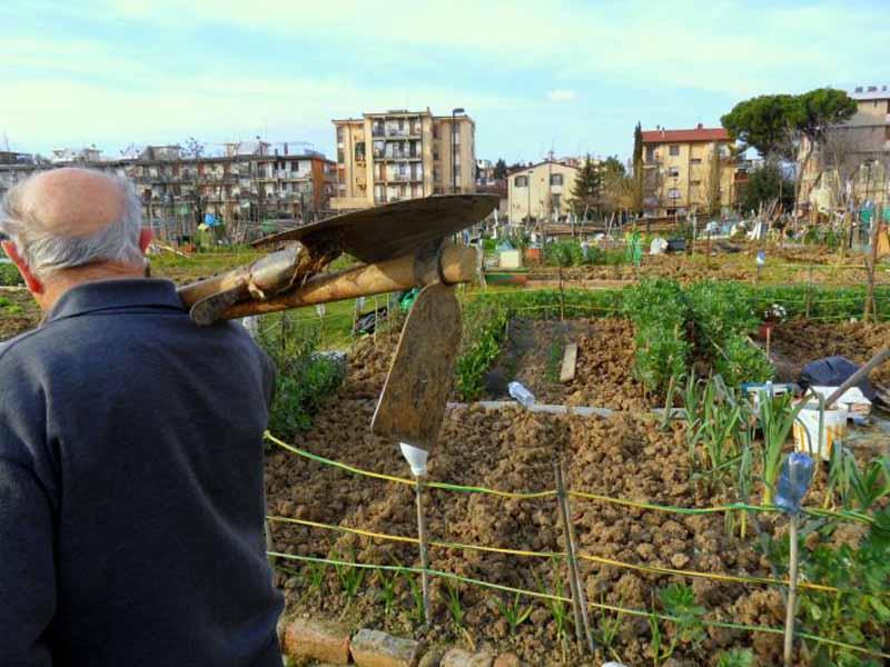 Orti sociali Firenze