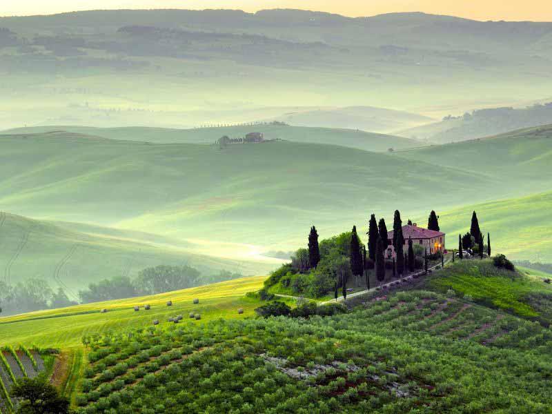 Agricoltura biologica toscana