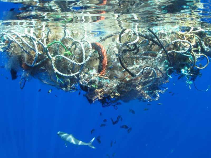 Arcipelago pulito