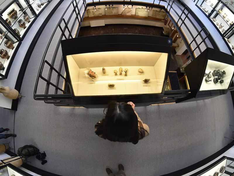 Musei soci Coop - Unicoop Firenze Insieme al Museo