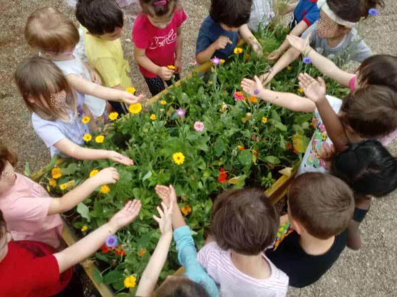 L'orto siamo noi crowdfunding Progetti Pensati con il Cuore Eppela