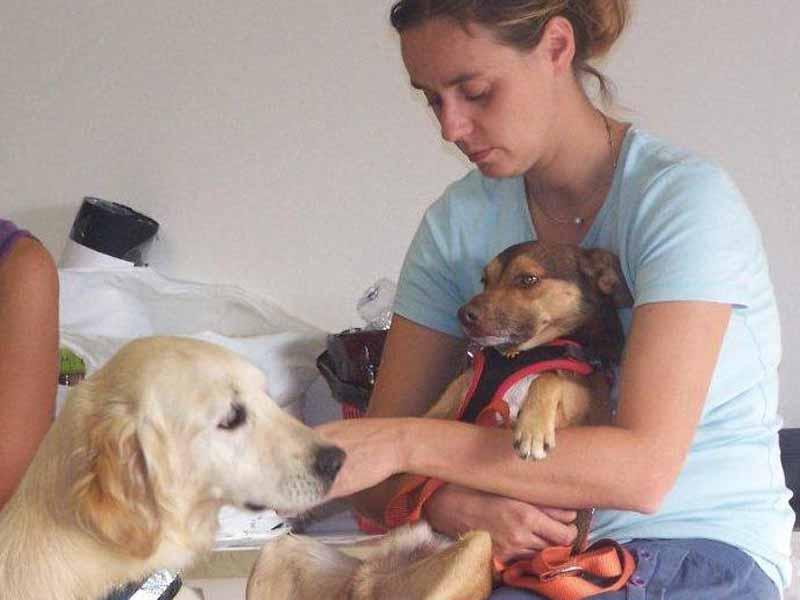 Giornata di studio sulla Pet therapy a Firenze