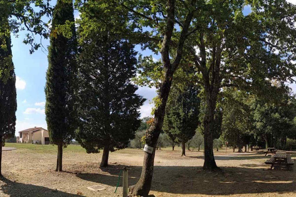 Picnic Firenze, dove fare grigliate a Firenze, aree attrezzate per picnic Poggio Valicaia