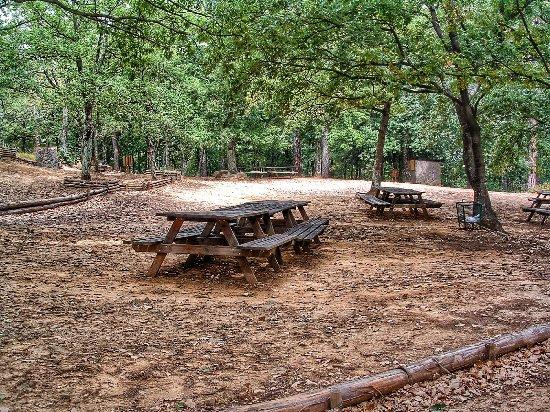 Area attrezzata grigliata Firenze - parco Poggio Valicaia