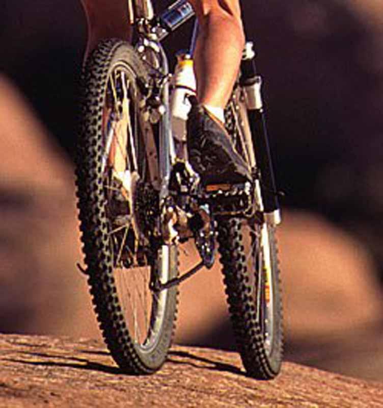 Bici_mountainbike