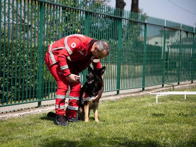Il parco dove sono addestrati i cani eroi