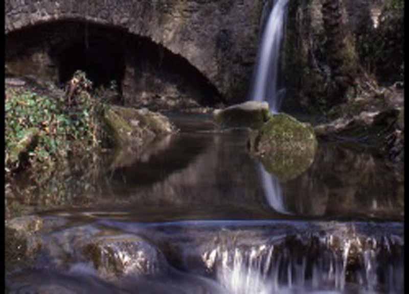 Trail del Mulinaccio - Itinera Scandicci 2018 programma