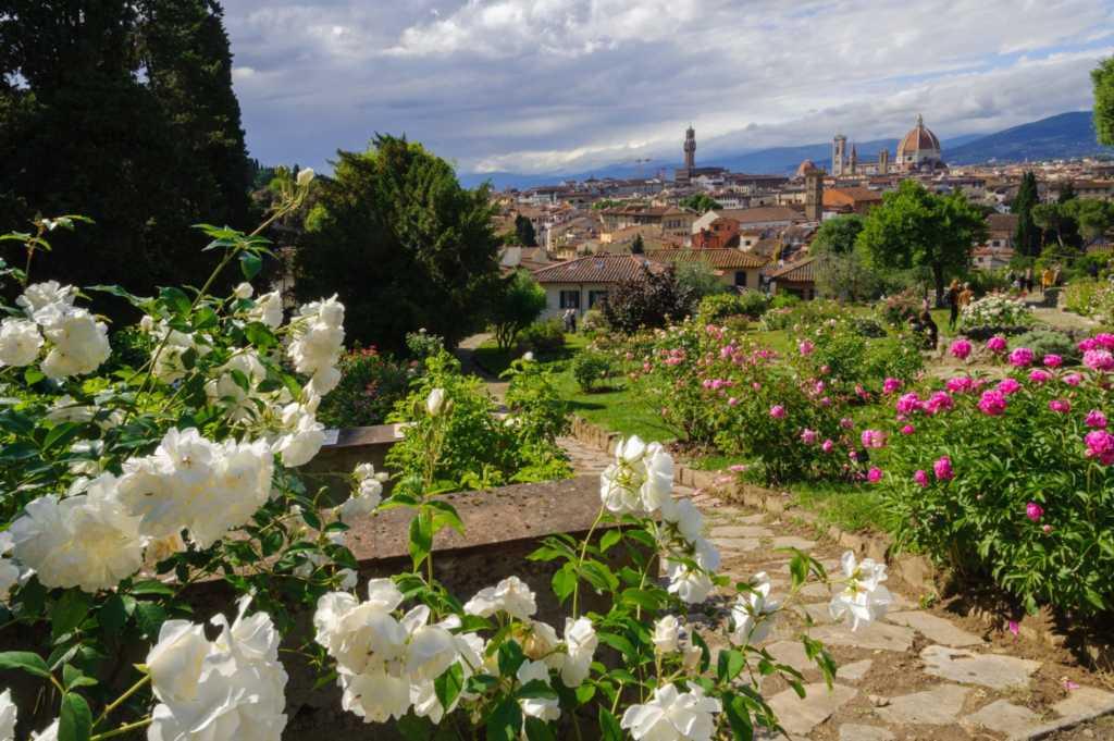Giardino rose Firenze