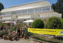 Mostra fiori ponte primo maggio Firenze eventi