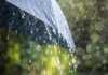 Meteo Firenze Pioggia Temporali