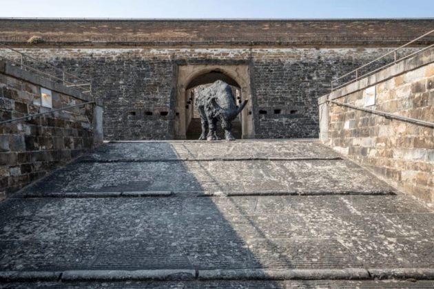 Mostra 2019 Rivalta Forte Belvedere