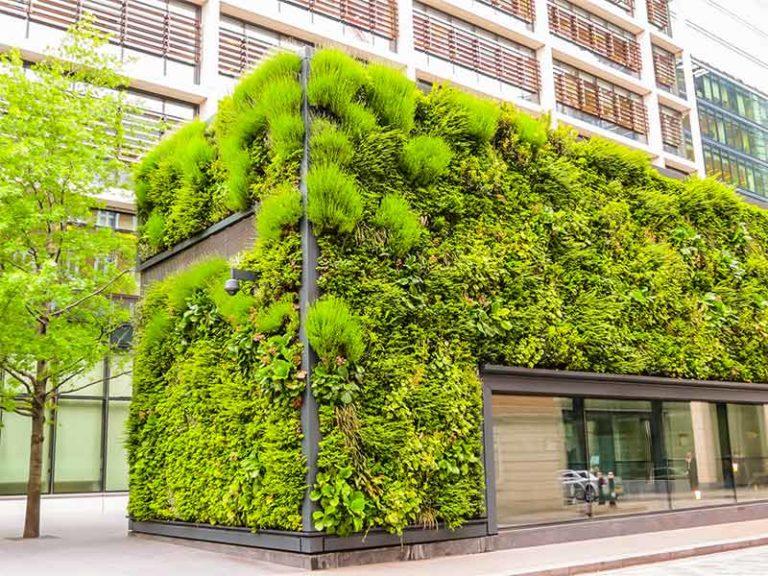 """Nardella presenta il mandato green: """"Via alla forestazione urbana"""""""