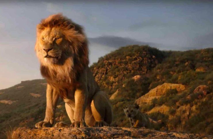Cinema all'aperto Firenze settembre Chiardiluna Re leone