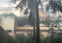 pioggia Firenze meteo