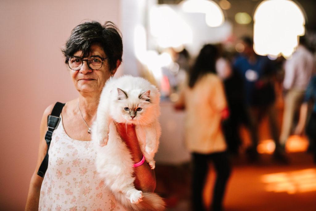 Follow Your Pet - cani e gatti