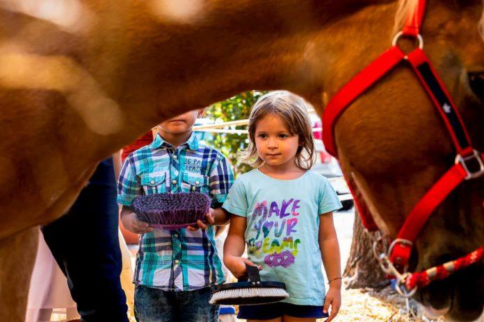 Follow Your Pet Eventi Firenze bambini famiglie weekend 21 22 settembre 2019