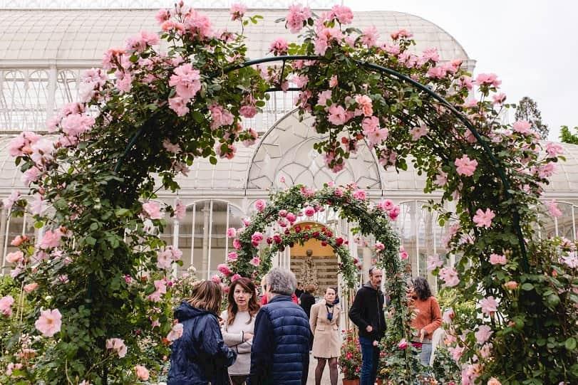 Mercatini fiere Firenze weekend 5 6 ottobre 2019 fiori