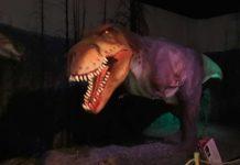 Dinosaur Invasion è la mostra di dinosauri a grandezza naturale allestita a Novoli, in programma a Firenze fino al 12 gennaio