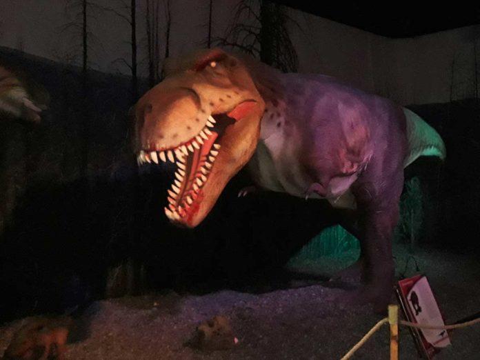 Dinosaur Invasion mostra dinosauri FIrenze Novoli