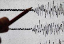 Terremoto smismografo