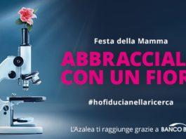 Azalea Airc 2020 festa mamma amazon regalo