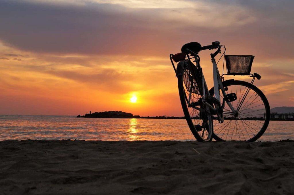 Bicicletta elettrica bonus bici pedalata assistita ebike