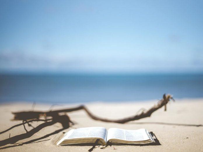 Libri da leggere nell'estate 2020: i consigli del libraio