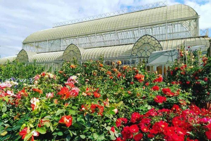 eventi Firenze 2 3 4 ottobre 2020 weekend mercatini mostra fiori