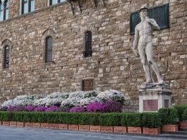 azalee a Palazzo Vecchio per festeggiare Pasqua