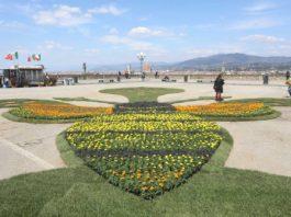 Firenze per le api e l'ambiente, al piazzale Michelangelo arriva 'Bee The Change'