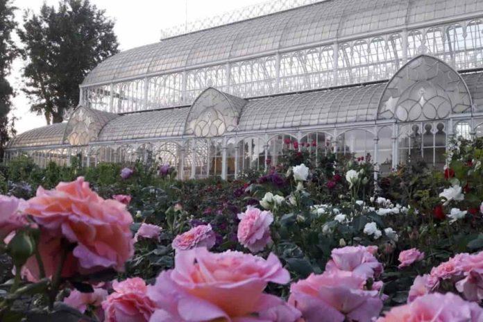mostra fiori firenze 2021 giardino orticoltura date mercato