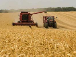 bonus braccianti agricoli 2021 800 euro inps quando arriva fare domanda