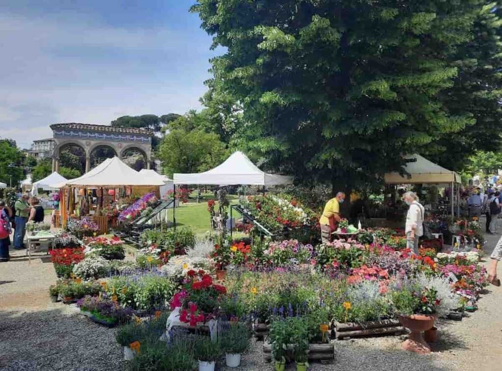 mostra mercato autunnale piante fiori società orticultura