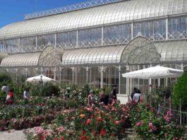 Mostra fiori Firenze 2021 giardino orticoltura orari green pass