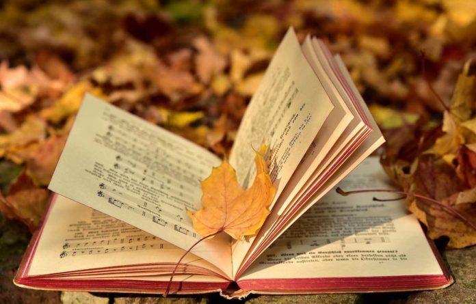 Romanzi libri da leggere musica