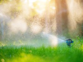 irrigazione smart